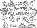 Animalessalvajes Dibujo De Animales Salvajes Para Imprimir Colorear Y Pintar
