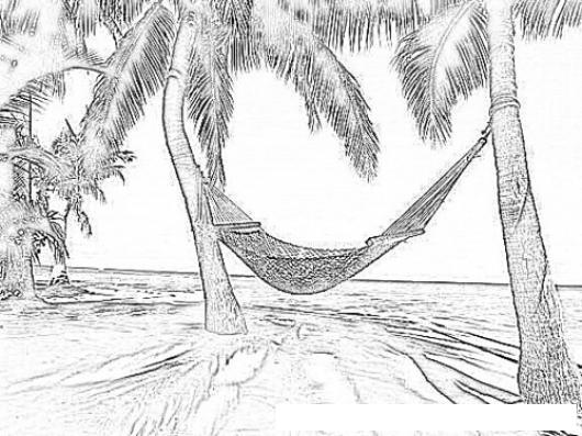 Dibujo De Hamaca Amarrada En Dos Palmeras En Frente Del Mar Caribe ...