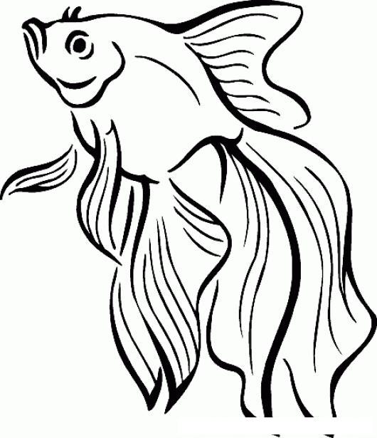 Pez Dorado Dibujo De Pescadito De Colores Para Pintar Y Colorear