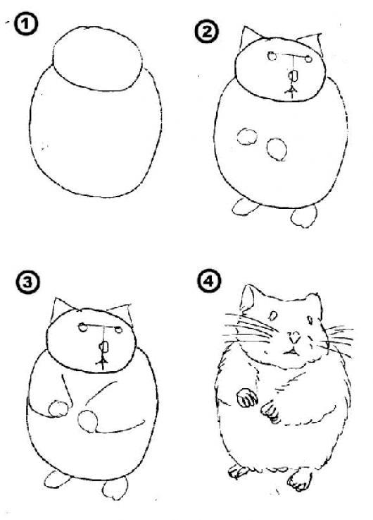 Como aprender a dibujar un hamster en solo 4 pasos para - Aprender a pintar ...