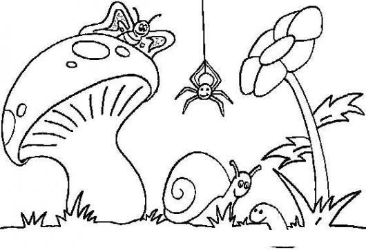 Dibujo De Animalitos E Insectos Silvestres Para Pintar Y Colorear