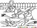 Dibujo De 4 Conejitos En El Jardin Para Pintar Y Colorear