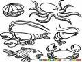 Dibujo De Mariscos Para Pintar Y Colorear Comidad Del Mar