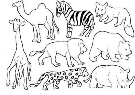 Animalitos Del Zoologico Para Pintar Y Colorear Jirafa Camello Cebra ...