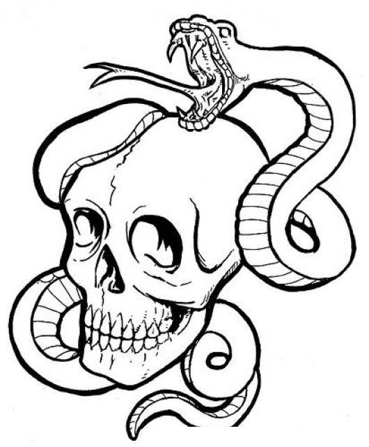 Dibujo De Un Craneo Con Una Culebra Serpiente Para Pintar Y