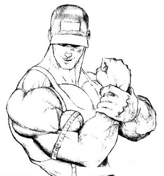 18 Pulgadas De Brazo Dibujo De Hombre Musculoso Midiendose El Brazo ...