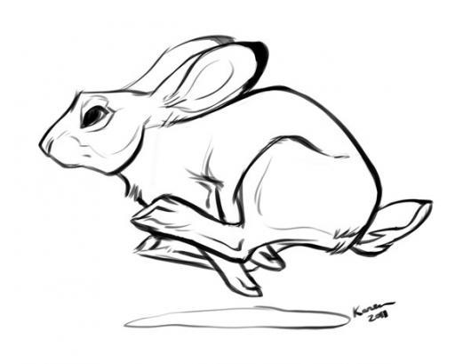 Echohuevo Dibujo De Conejo Echo Pistola Corriendo A Toda Velocidad