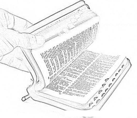 Dibujo De Una Biblia Para Pintar Y Colorear  COLOREAR DIBUJOS