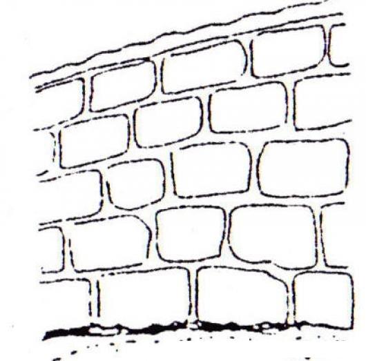 Pared de blocks con cemento sin cernido para pintar y - Dibujos para paredes ...
