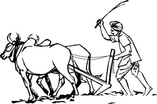 Agriculture Essay In Tamil