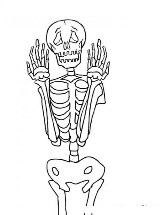 Dibujo De Calavera Miedosa Para Pintar Y Colorear Esqueleto Humano