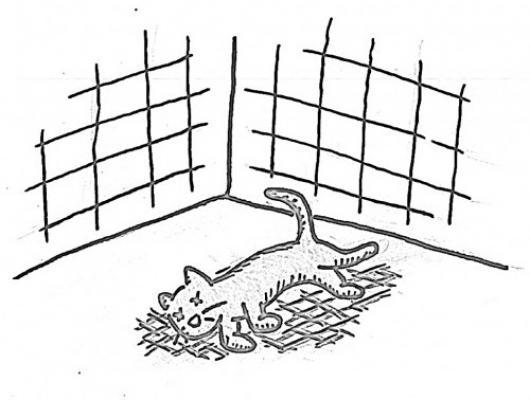 Dibujo De Gato Muerto Para Pintar Y Colorear Colorear