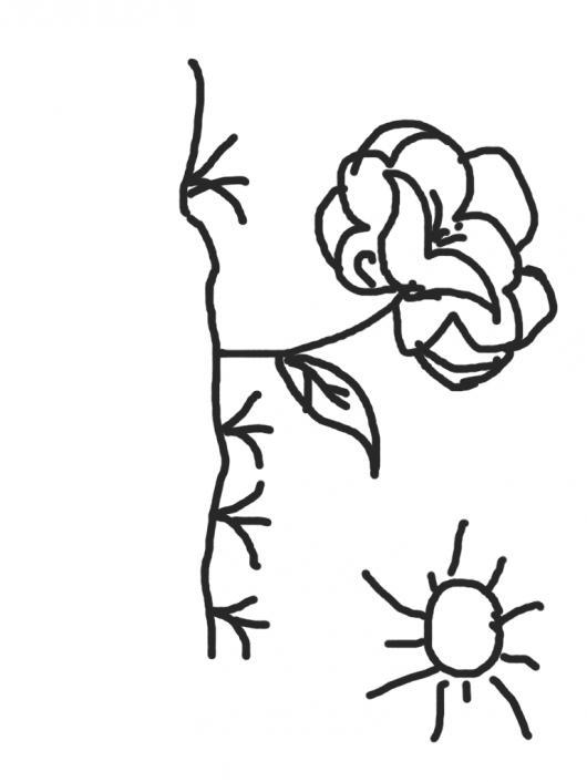 Flor De Mayo Para Pintar Colorear Dibujos Varios Flor De