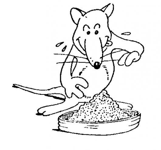 Comida de rata dibujo de concentrado para ratas para - Comida para ratones ...