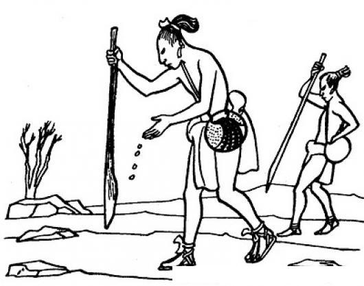 Dibujo De Aztecas Sembrando En La Tierra Para Pintar Y Colorear ...