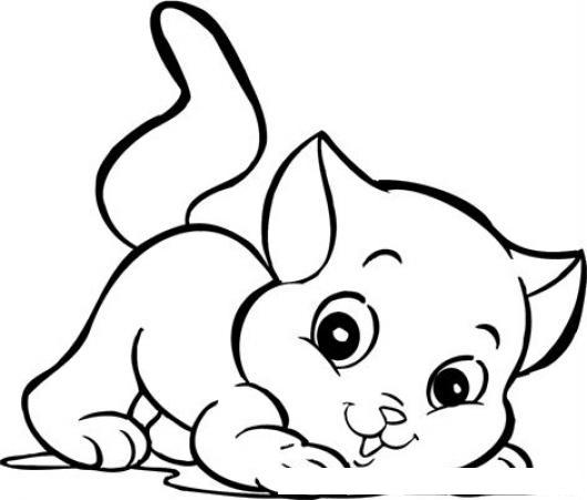 Gato Bebe Para Pintar Y Colorear A Un Gatito Cachorrito Dibujo De Un ...