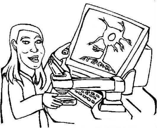 Microscopio Computarizado Dibujo De Doctora Quimica Biologa Con Un