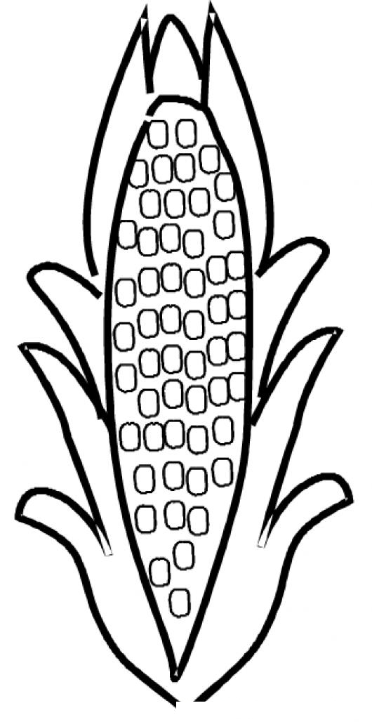 Corn On Cob Coloring Pages Corn Cob Coloring Page