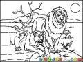 Leonyleona Dibujo De Una Pareja De Leones Para Pintar Y Colorear Leona Y Leon Leonayleon Juntos
