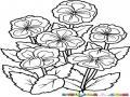 Dibujo De Flores Violetas Para Pintar Y Colorear