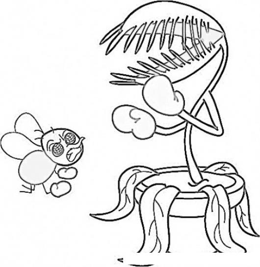 Planta Carnovora Dibujo De Mosca Con Flor Carnivora Para Pintar Y