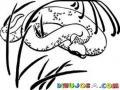 Dibujo De Serpiente En El Monte Para Colorear