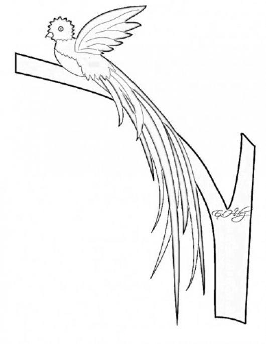 Free coloring pages of el quetzal