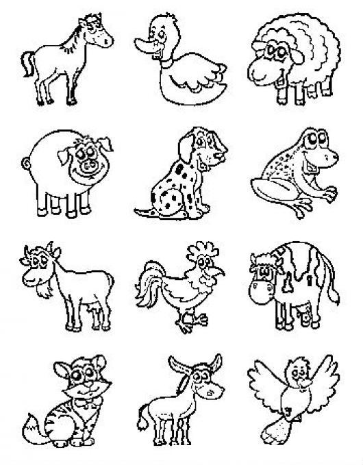 Dibujo De Animalitos Para Colorear Colorear Dibujos Varios