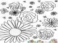 Cuadro De Flores Rosas Girasol Margaritas Y Floresillas Silvestres Para Pintar Y Colorear