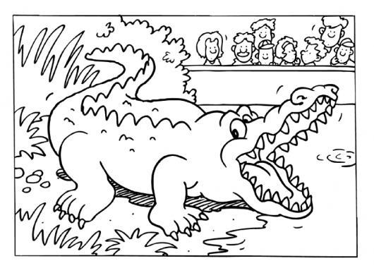 Dibujo De Un Lagarto En El Zoologico Para Pintar Y Colorear Un