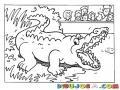 Dibujo De Un Lagarto En El Zoologico Para Pintar Y Colorear Un Cocodrilo