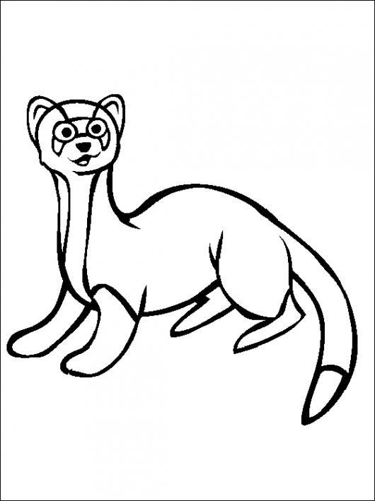 El Dia De La Marmota Dibujo De Una Marmota Para Pintar Y Colorear ...