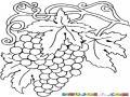 Colorear Racimo De Uvas