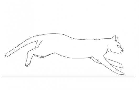 Dibujo De Gato Corriendo Para Pintar Y Colorear Colorear Dibujos