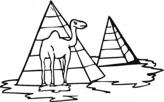 Colorear Camello En Piramides De Egipto  COLOREAR DIBUJOS DE