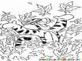 Colorear a tiger entre las hojas