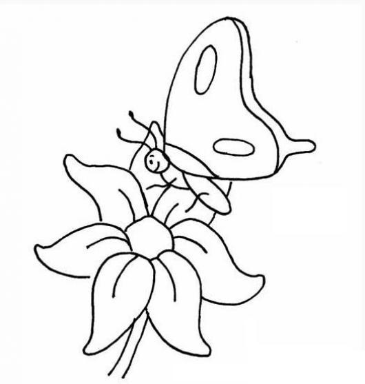 mariposa sobre una flor para colorear | COLOREAR MARIPOSAS | hermosa ...