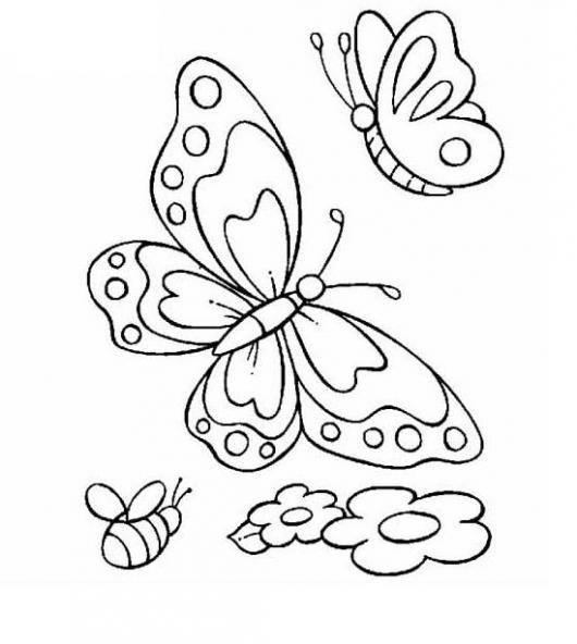 mariposas y abeja para colorear   COLOREAR MARIPOSAS   dos mariposas ...