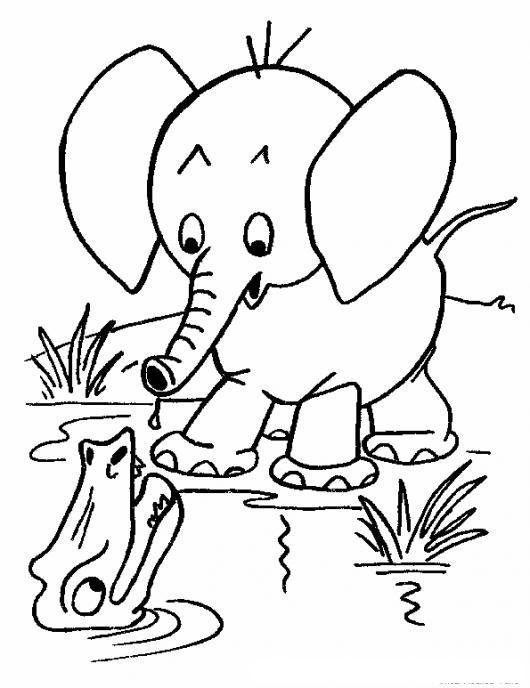 Colorear Elefante Con Cocodrilo | COLOREAR DIBUJOS DE CHOLO ...