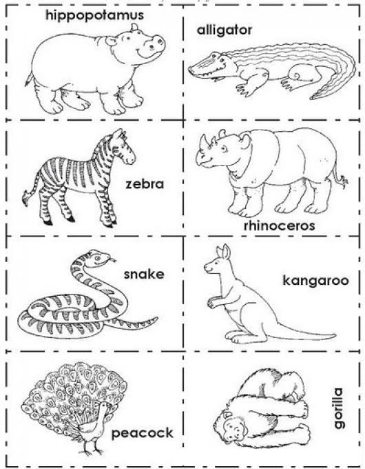 Dibujo Para Pintar Animales En Ingles Colorear Dibujos En Ingles