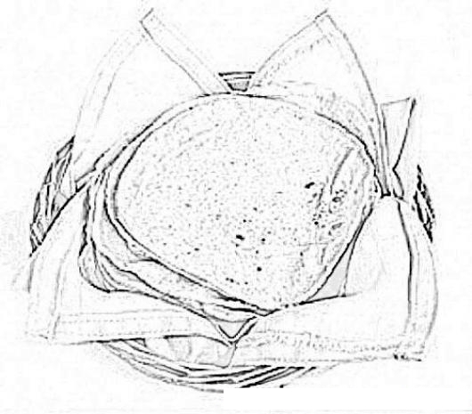 Dibujo D Eun Canasto De Tortillas De Maiz De Guatemala Para ...