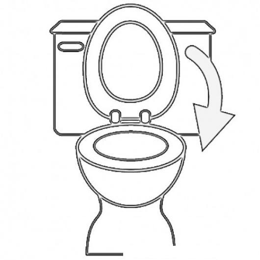 por favor cerrar la tapa del inodoro dibujo para pintar y colorear ... - Imagenes De Un Bano Para Colorear