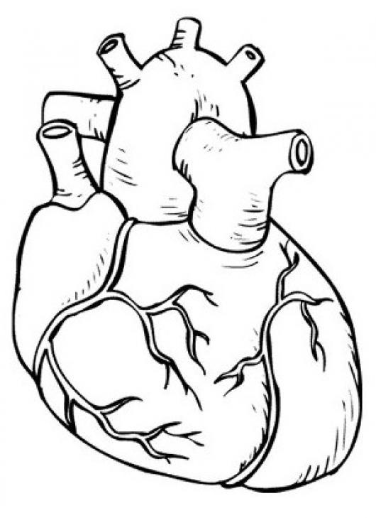 Dibujo de Corazón Cupido para Colorear - Dibujos.net
