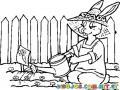 Dibujo De Conejita Regando Zanahorias Para Pintar Y Colorear