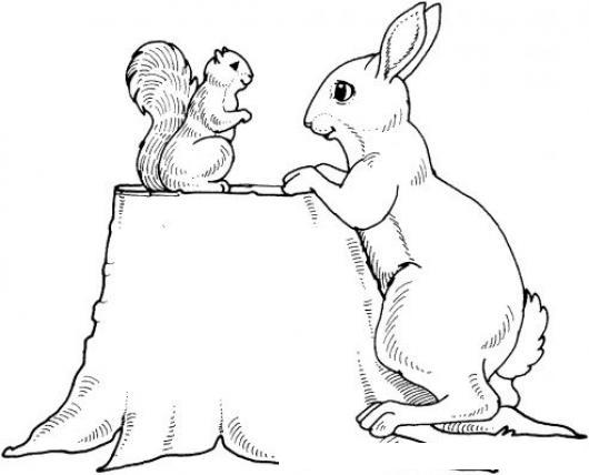 Dibujo De Ardilla Y Conejo Para Pintar Y Colorear  COLOREAR